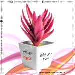 طراحی و چاپ روی گلدان کوچک