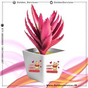 چاپ گلدان سرامیکی کوچک - طرح پو